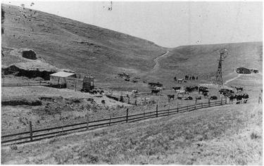 Photo of Nebraska farmstead, c. 1890.