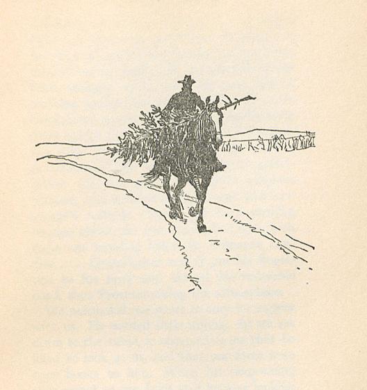Image of 'Jake bringing home a tree'