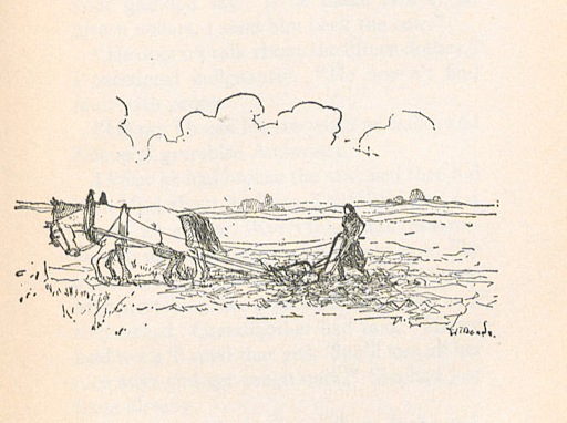 Image of 'Ántonia working the field'
