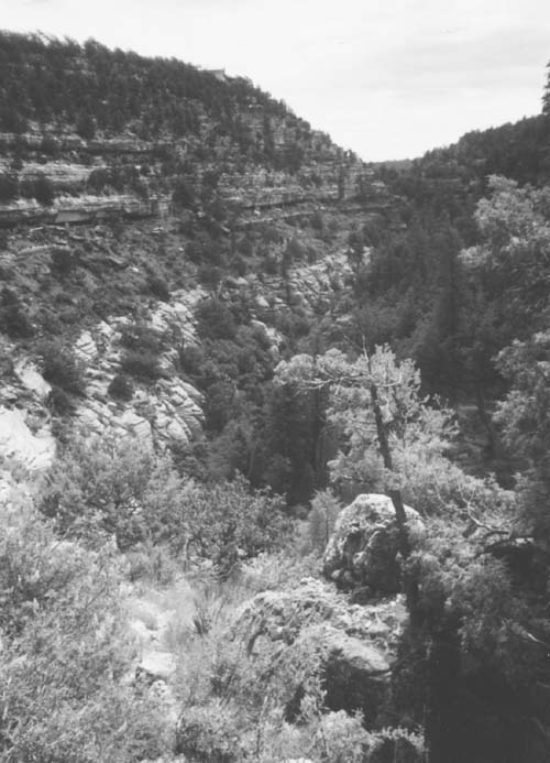 """Picture of the """"V-shaped inner gorge,"""" Walnut Canyon. Photo by the author"""