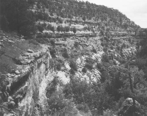 Picture of soft stratum of rock hollowed out over time to create grooves for ancient clif-dwellings, Walnut Canyon. Photo by the author