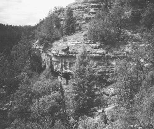 """Picture of Thea's """"rock-room"""" at the juncture between Ranger Canyon and Walnut Canyon. Photo by the author"""