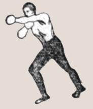 sketch of a boxer